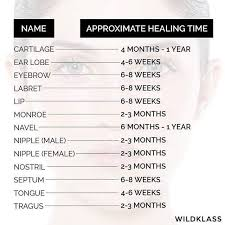Piercing Chart Read This Before You Get A Gun Or Needle Ear Piercing