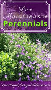 Small Picture 736 best Perennials images on Pinterest Flower gardening