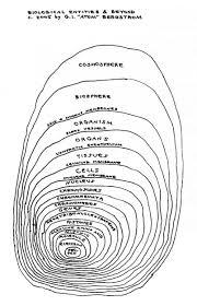 Atom To Biosphere Chart Www Bedowntowndaytona Com