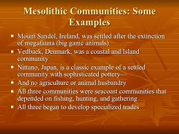 Neolithic And Paleolithic Venn Diagram Mesolithic And Neolithic