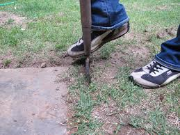 Image result for garden path edging techniques