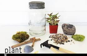 succulent terrarium work