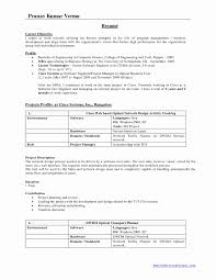 Technical Resume Format Doc Beautiful Fresher Software Engineer