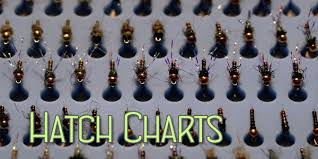 Loyalsock Creek Hatch Chart Stream Conditions Tco Fly Shop