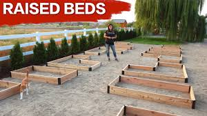 setting up raised beds garden answer