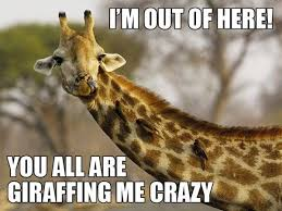 Giraffe Quotes And Sayings Giraffes Unicorns And Other Loves In Gorgeous Giraffe Quotes