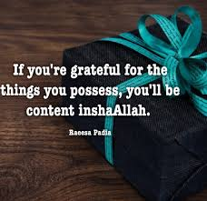 Quotes About Being Grateful Beauteous Quotes By Raeesa Padia From Darkness To Light