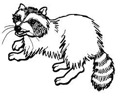 Small Picture Good Raccoon Coloring Pages 18 About Remodel Seasonal Colouring