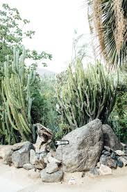 moorten botanical gardens palm springs california weekend 2