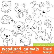 Coloring Pages Forest Animals Impressive Design Ideas Woodland Animal Coloring Pages Forest