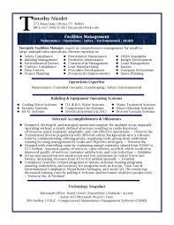 Information Technology Test Manager Resume Sample Socalbrowncoats