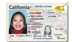 - Times Your Angeles Los Here's Driver's License From Id Dmv Fix Real The For