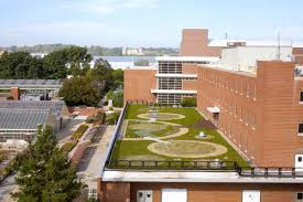 green roof on howlett hall