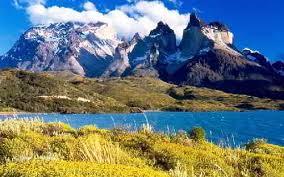 Природа Южной Америки ЗООМИР Природа Южной Америки