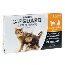 Frontline Plus For Cats Ingredients Sentry Bodrumnakliyat Co