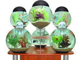 Octopus Studios Modular Fish Tank The Modular Silverfish Aquarium, built by  thefurniture and aquarium design