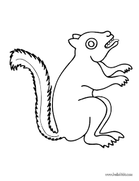 Small Picture Squirrel coloring pages Hellokidscom