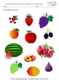 summer lesson plan   Fieldstation co further Summer Season Fruits Name   is strawberry a fruit further  in addition 125 FREE ESL Summer worksheets together with summer lesson plan   Fieldstation co likewise summer lesson plan   Fieldstation co also Best 25  Preschool summer theme ideas on Pinterest   Summer themes besides 125 FREE ESL Summer worksheets also Best 25  Preschool summer theme ideas on Pinterest   Summer themes also 67 FREE ESL vacation worksheets additionally 2nd grade  3rd grade Math Worksheets  Reading bar graphs. on summer season worksheets for kindergarten low onvacations