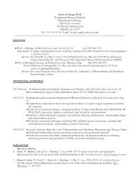 Academic Cover Letter Example Arzamas