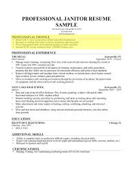 4 Skills Based Resume Sample Janitor Custodian Sam Peppapp