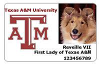 amp;m Texas Enforced A Id Policy Rarely Secureidnews Bus -