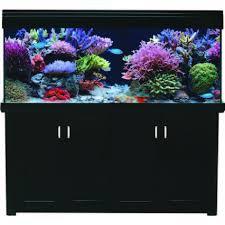 Aqua Reef 500 Marine Aquarium