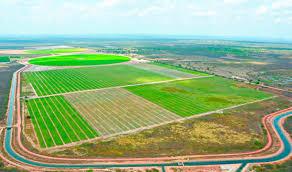 Resultado de imagem para canais de irrigação piauí