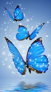 Blue Butterfly Wallpaper For Phone ...