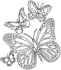 Mandalas Papillon 18 Mandalas Coloriages Imprimer