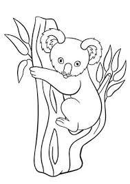 Kleurplaten Wilde Dieren Moeder Koala Zit Op De Boomtak Met Haar