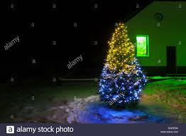 Cranbury Christmas Lights Christmas Tree Night With Lights And Rural House Stock Photo