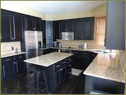 Dark Maple Kitchen Cabinets Improvements Refference White Kitchen Cabinets With Dark