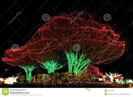Outside Christmas Lights Christmas Lights Outdoor Trees Lighting And Ceiling Fans