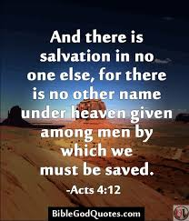 Born Again Christian Quotes Best of Quotes About Salvation 24 Quotes