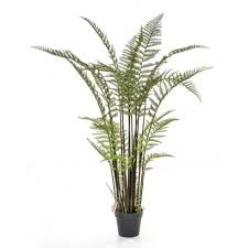 perfect office plants. artificial fern perfect touch of hardwearing fake greenery for offices and reception areas office plants h
