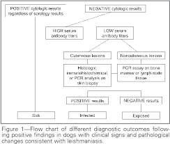 Figure 1 From Guidelines For Diagnosis And Clinical
