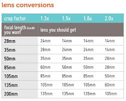 Doe A Deery The Crop Factor One Extra Tip Before You Buy A