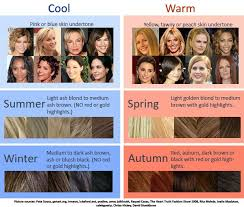 Cool Warm Hair Color Chart How To Determine Which Season