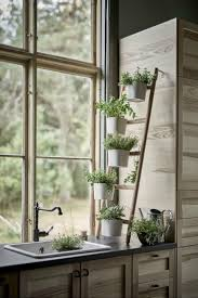 Garden Kitchen Windows 17 Best Ideas About Kitchen Herbs On Pinterest Indoor Herbs