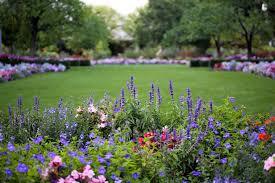 fertile garden. The Fertile Garden L
