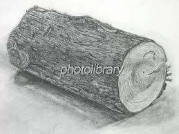 丸太の木炭デッサン 写真素材 328702 フォトライブラリー Photolibrary