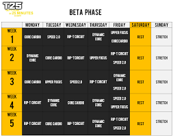 focus t25 schedule beta phase