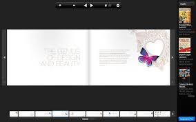 this layout adapted a more simplistic and clean layout and focus was on the erfly which was the topic of the book this layout showed that clean
