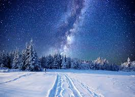 winter night stars wallpaper. Beautiful Winter Wallpapers Stars Nature Spruce Winter Sky Snow Forests Night Time Night Inside Wallpaper
