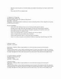 Fraud Analyst Sample Resume Beauteous Credit Card Analyst Resume Sample Unique Fraud Analyst Resume