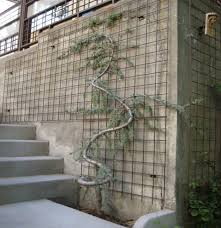 Small Picture Outdoor Trellis Designs Wood trellis Metal trellis and Gardens