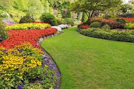 garden edgers. Simple Edgers A Guide To Lawn Edgers Intended Garden U
