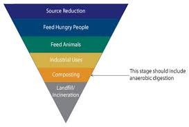 perspectives essay love food and hate waste platform emerge food