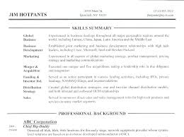 Senior Finance Executive Resume Samples Leadership Examples Of