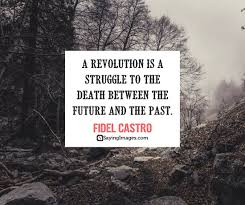 Revolution Quotes Amazing 48 Revolution Quotes To Help You Reflect SayingImages
